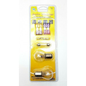 1 AUTO MOBILE MASTER SET FUSES BULBS CAPSULE LAMP